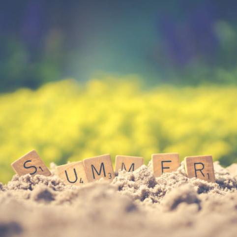 今日夏至,静享清和